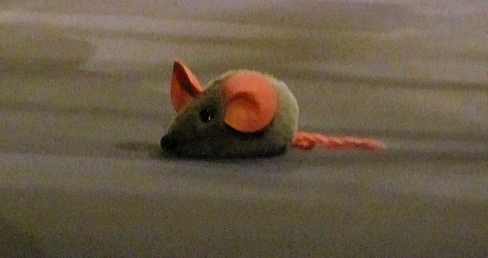 Die Maus aus der Orgelpfeife