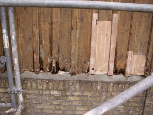 Schäden am Holz
